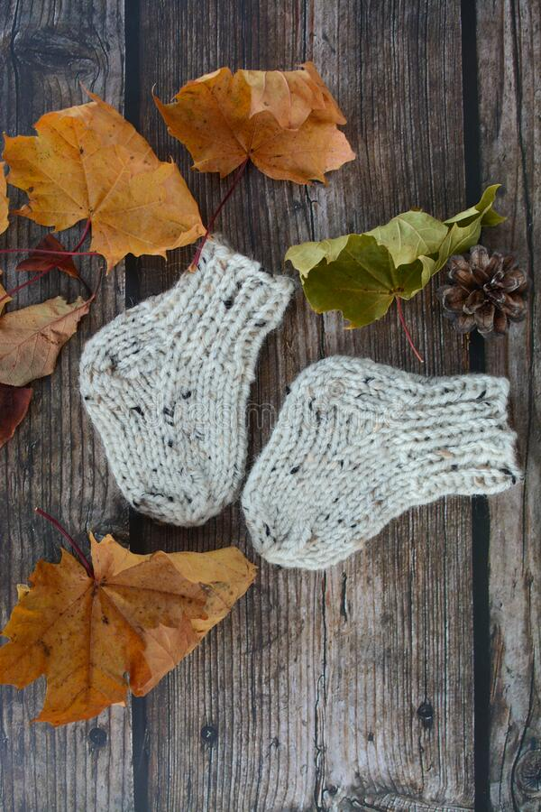 Soft and chunky, warm baby socks, hand-knitted, on dark wooden background. Autumn decorations stock photos