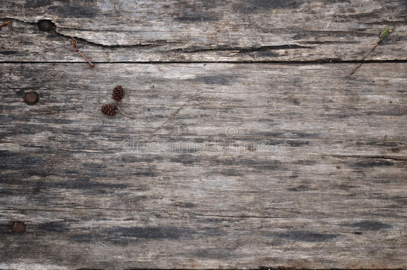 Wood texture. Wooden background. A small knob lies on a wooden board. In the woods. Warm tinting. Wood texture. Wooden background. A small knob lies on a wooden stock image
