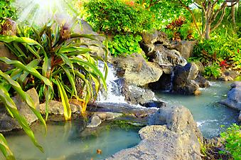 Небольшой водопад в тропическом саду. (Код изображения: 01010)