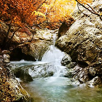 Водопад в осеннем лесу. (Код изображения: 01019