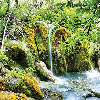 Потрясающий водопад. (Код изображения: 01020)