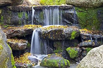 Лесной водопад (Каталог номер: 01040)