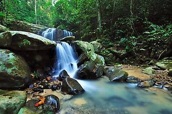 Водопад на острове Борнео (Каталог номер: 01057)