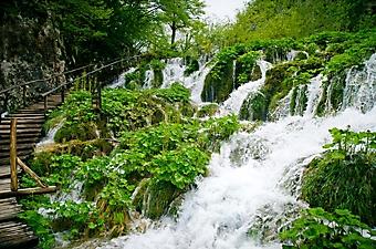 Лестница у водопада (Каталог номер: 01061)