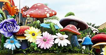 Волшебный сад. (Код изображения: 10004)
