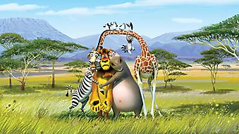 Алекс, Марти, Глория и Мелман. Мультфильм Мадагаскар. (Код изображения: 10242)