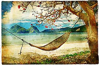 Тропический сюжет. (Код изображения: 17004)