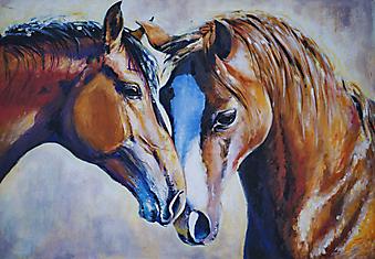 Лошади. (Код изображения: 17009)