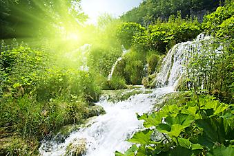 Водопад в лесу. (Код изображения: 19022)
