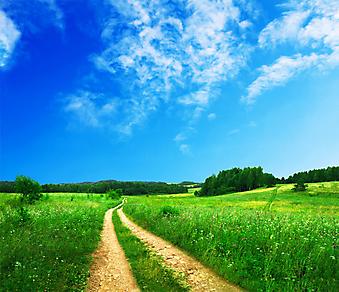 Красивый летний пейзаж. (Код изображения: 19034)