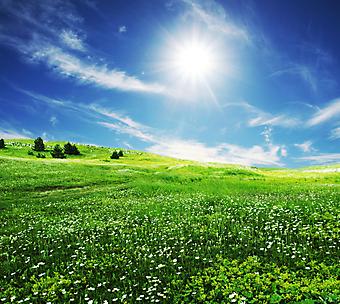 Зеленые поля и белые облака. (Код изображения: 19039)