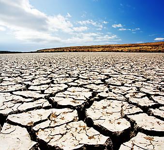 Засуха. (Код изображения: 19042)