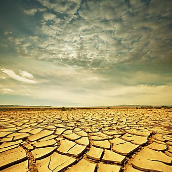Засуха. (Код изображения: 19050)