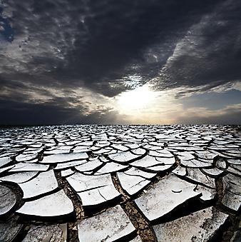 Засуха. (Код изображения: 19051)