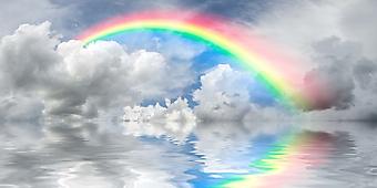 Радуга над облаками (Каталог номер: 19076)