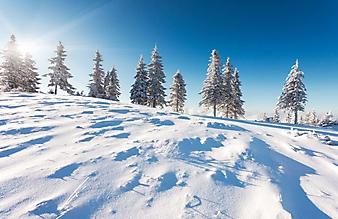 Зимний пейзаж в горах (Каталог номер: 19098)