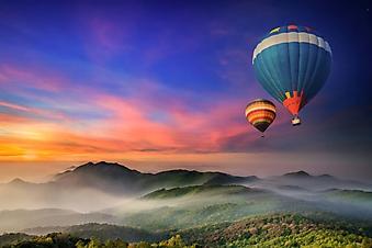 Воздушные шары над лесом (Каталог номер: 19106)