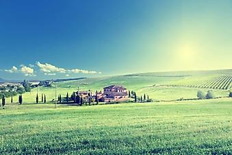Итальянская ферма (Каталог номер: 19115)