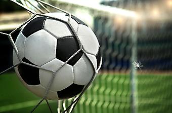 Мяч в сетке ворот. (Код изображения: 20051)