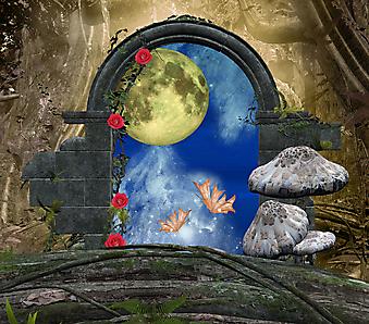 Луна. (Код изображения: 21039)