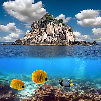 Тропический рай и кораллы. (Код изображения: 21052)