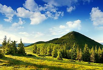 Летний пейзаж в горах. (Код изображения: 03033)