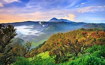 Вершина вулкана Бромо, Ява (Каталог номер: 03065)