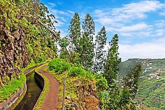 Пешеходная тропа в горах, Мадейра (Каталог номер: 03067)