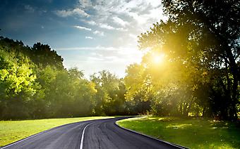 Асфальтовая дорога через лес. (Код изображения: 06001)