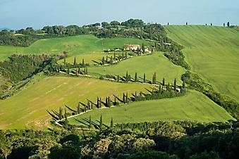 Извилистая дорожка, Италия (Каталог номер: 06052)
