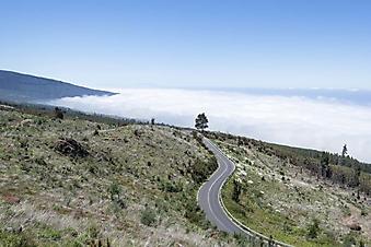Дорога в облаках (Каталог номер: 06063)