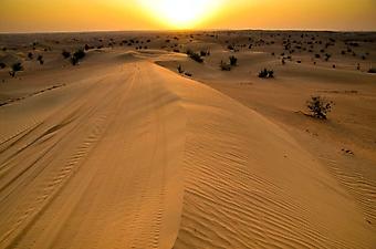 Дорога через пустыню (Каталог номер: 06065)