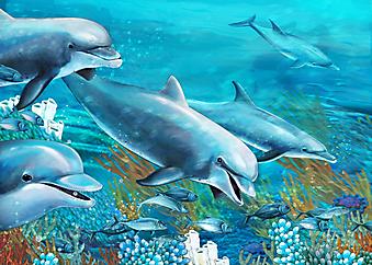 Дельфины. (Код изображения 07023)