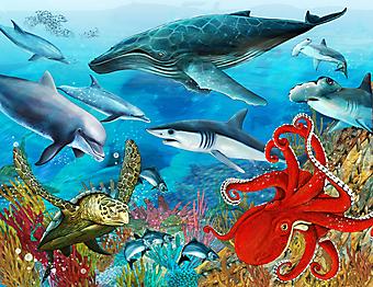 Коралловый риф. (Код изображения 07028)