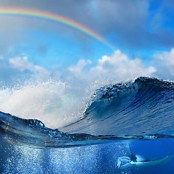 Радуга над океанской волной (Каталог номер: 07037)