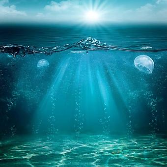 Завораживающий подводный пейзаж (Каталог номер: 07043)