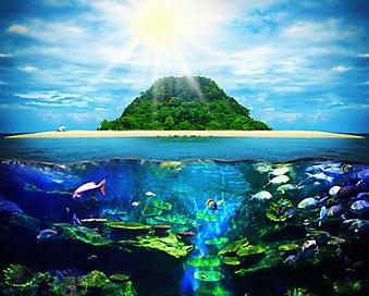Подводный мир тропического острова (Каталог номер: 07050)