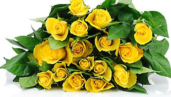 Букет желтых роз на белом фоне. (Код изображения: 09209)