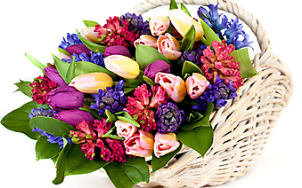 Яркие цветы в корзинке. (Код изображения: 09250)