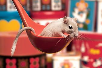 Мышь в красном половнике. (Каталог номер: 11167)