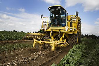 Трактор. (Код изображения: 13042)