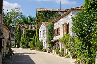 Улочка с зелеными домиками (Код изображения: 14049)