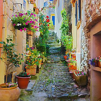 Яркая улочка в Провансе. Франция. (Код изображения: 14059)