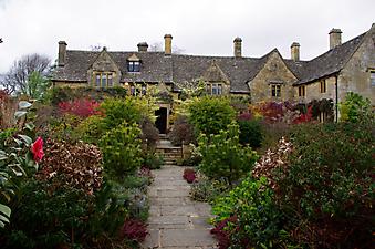 Английский зеленый дворик (Код изображения: 14079)