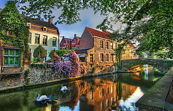 Лебеди на канале в Брюгге. Бельгия (Код изображения: 14083)