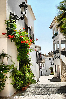 Испанская улочка (картина маслом) (Каталог номер: 14101)