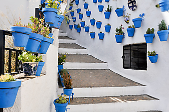 Горшки с цветами на улицах городка в Андалузии (Каталог номер: 14109)