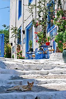Улочка на остове Кос (Каталог номер: 14111)