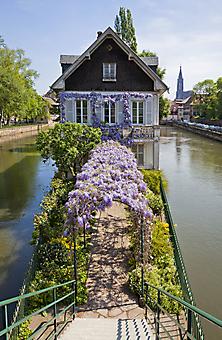 Дом на канале, Страсбург (Каталог номер: 14164)