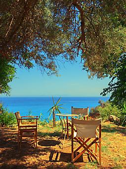 Веранда под оливковым деревом (Каталог номер: 15073)
